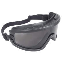 Radians Barricade™ Safety Goggle
