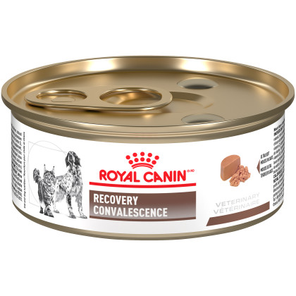 Royal Canin Veterinary Diet Feline & Canine Recovery Rs Canned Cat Food & Canned Dog Food