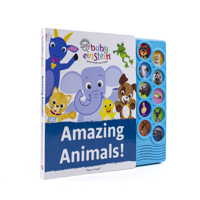Listen and Learn Board Book: Amazing Animals!