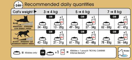 Ragdoll Adult feeding guide