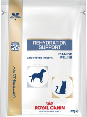Rehydration support (sachet)