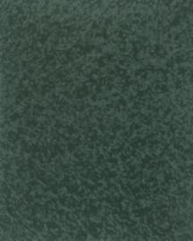 Bainbridge Spruce 32