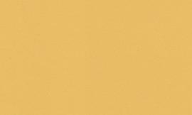 Crescent Chamois Gold 32x40