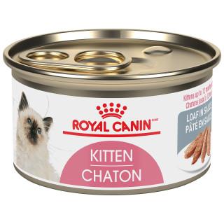 CHATON PÂTÉ EN SAUCE – nourriture en conserve pour chatons