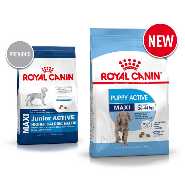 maxi junior active dog food royal canin. Black Bedroom Furniture Sets. Home Design Ideas