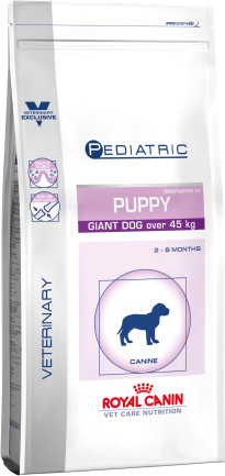 Pediatric puppy giant dog