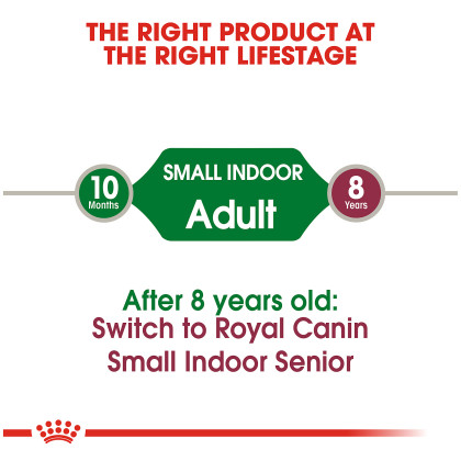 Small Indoor Adult Dry Dog Food