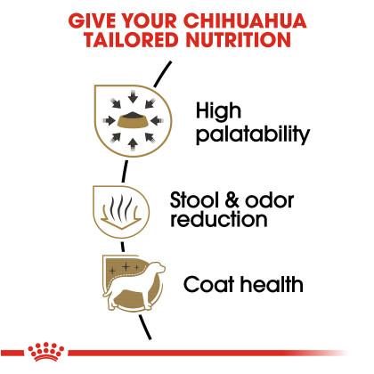 Chihuahua Adult Dry Dog Food