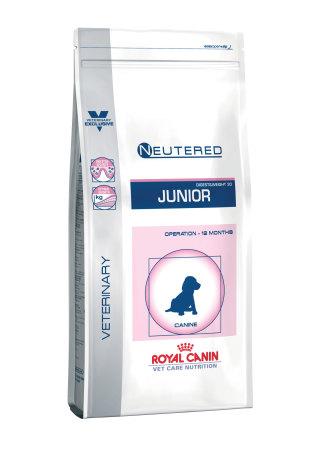 Neutered Junior