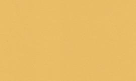 Crescent Chamois Gold 40x60