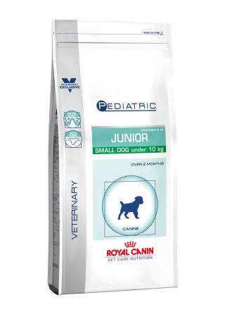 Pediatric Junior Small Dog