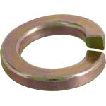 Grade 8 Split Lock Washer
