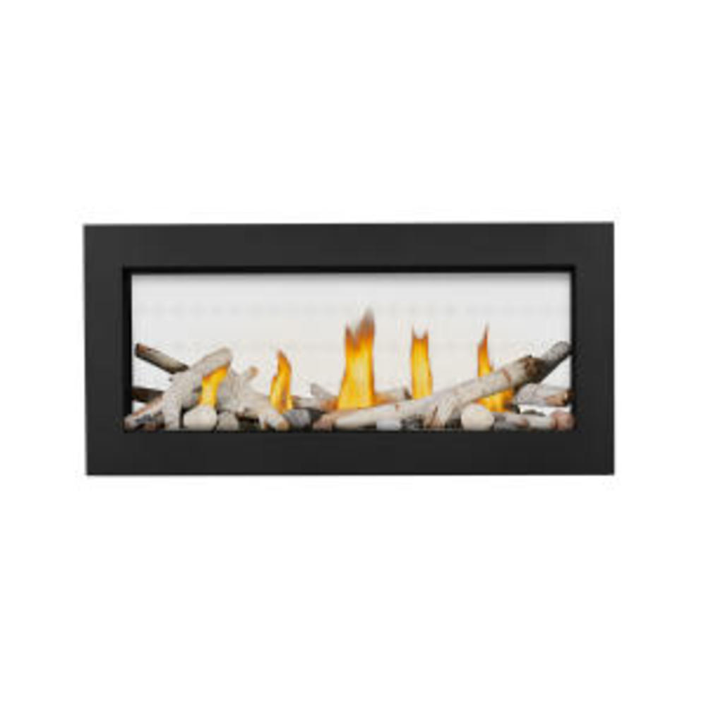 Vector™ 38 See Through Direct Vent Gas Fireplace