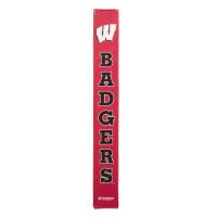 Wisconsin Badgers thumbnail 2