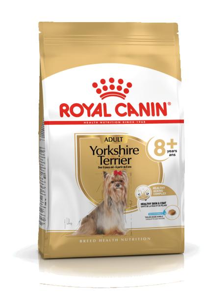 Yorkshire Terrier Adult 8+