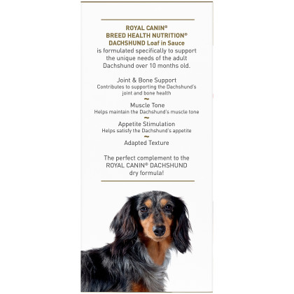 Royal Canin Breed Health Nutrition Dachshund Adult Canned Dog Food