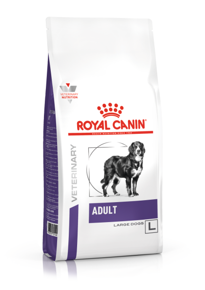 Adult (Large Dogs)