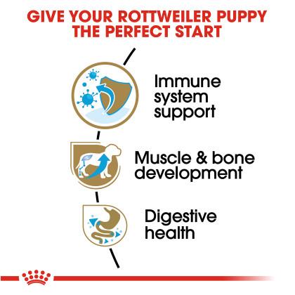 Rottweiler Puppy Dry Dog Food