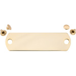Polished Brass Large Rivet Quick-Tag