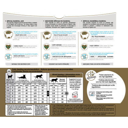 Royal Canin Feline Breed Nutrition Ragdoll Dry Cat Food