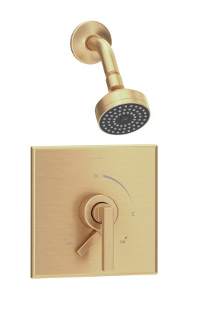Duro Single Handle 1-Spray Shower Trim with Secondary Volume Control (Valve Not Included)