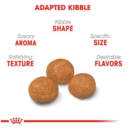 X-Small Adult Dry Dog Food