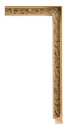 Senelar   Gold 1 1/4