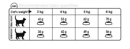 Digestive Care feeding guide