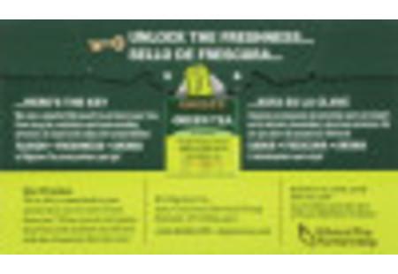Back of Green Tea box bilingual packaging
